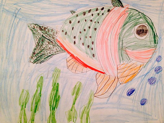 Drawing of cutthroat by Bob Green's six year-old granddaughter.