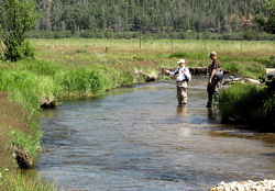Youth Camp Fishing at Rocky Mountain National Park